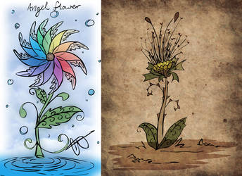 The Flower and the Weed