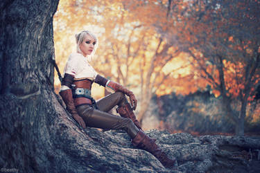 The Witcher 3 - Ciri by beethy