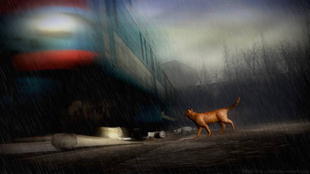 gm01 trains_and_winter_rains