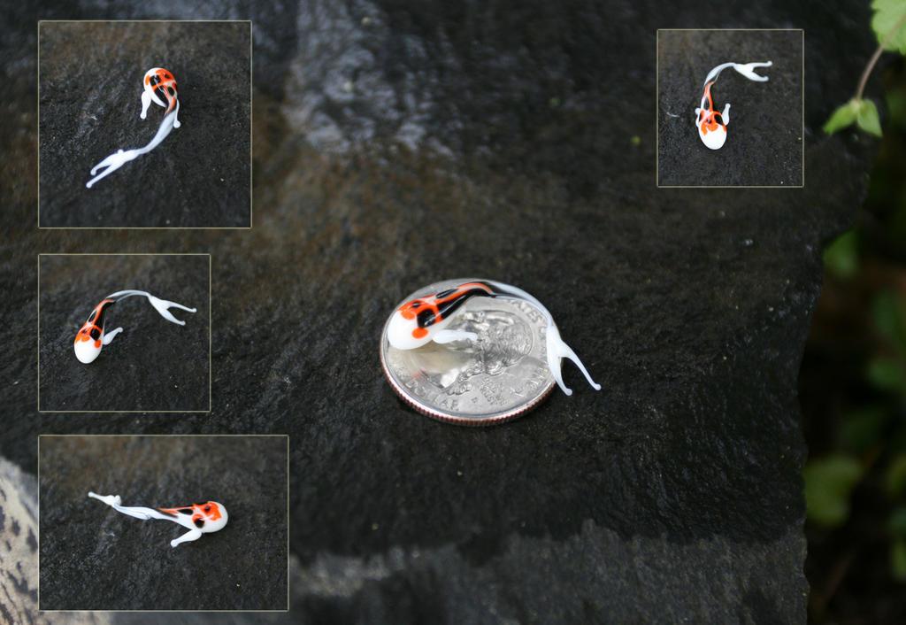 Orange and black speckled koi by fallenleaveskoi on deviantart for Orange and black koi