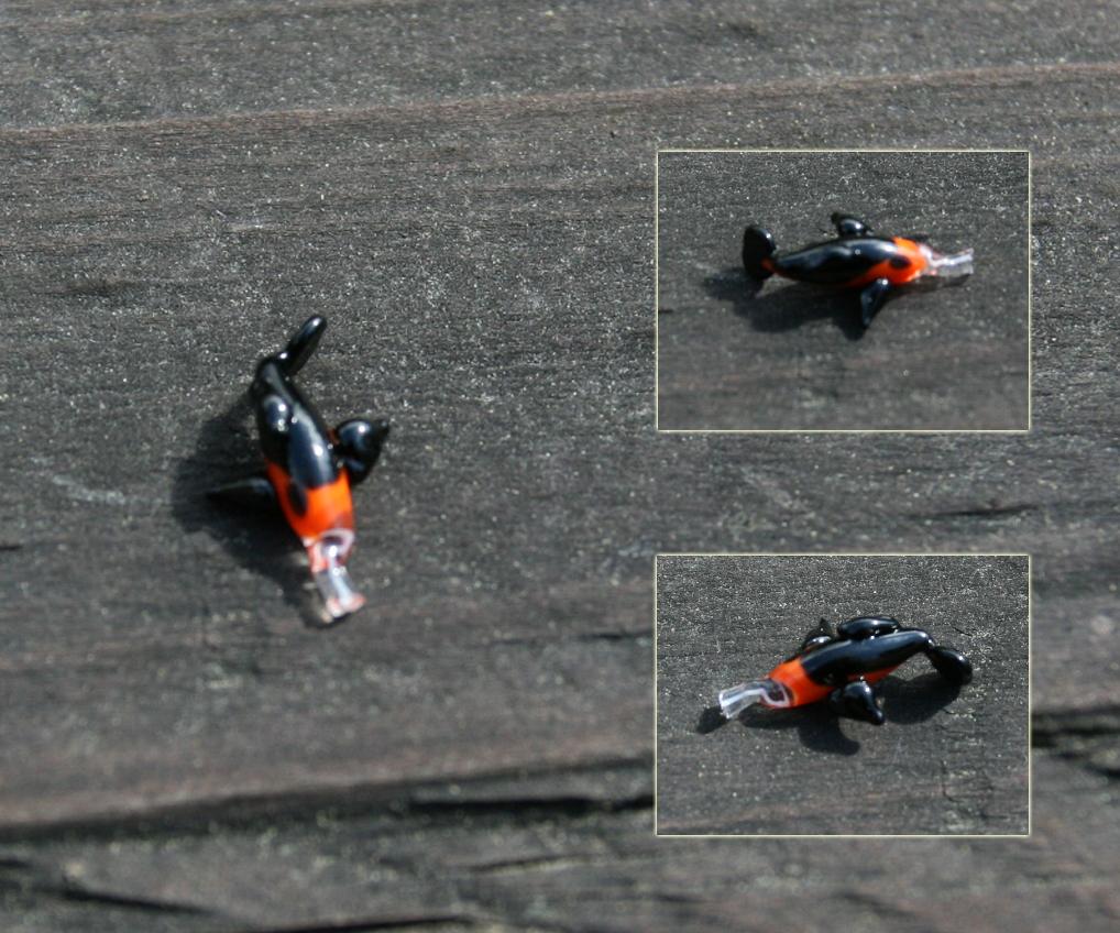 27 orange and black koi glass by fallenleaveskoi on for Orange and black koi
