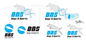 DNS_logo_plan