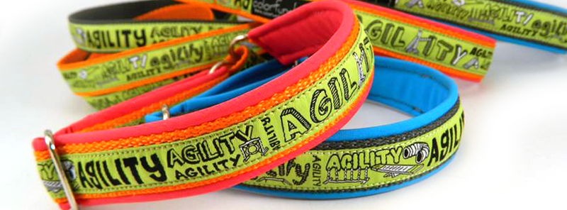 PPd_Agility_cover01