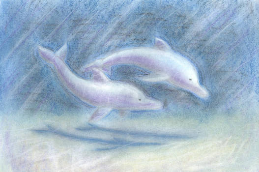 Pastel Dolphins