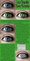 Cat Eye and Reptile Eye Tutorial