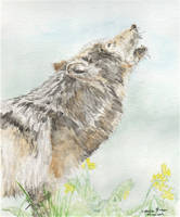 Howling Wolf Watercolour