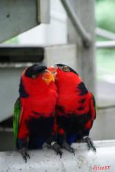 Kissing by dj-chua
