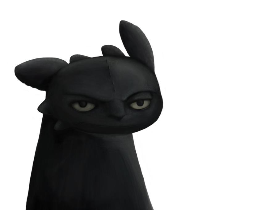 Unamused Black Cat