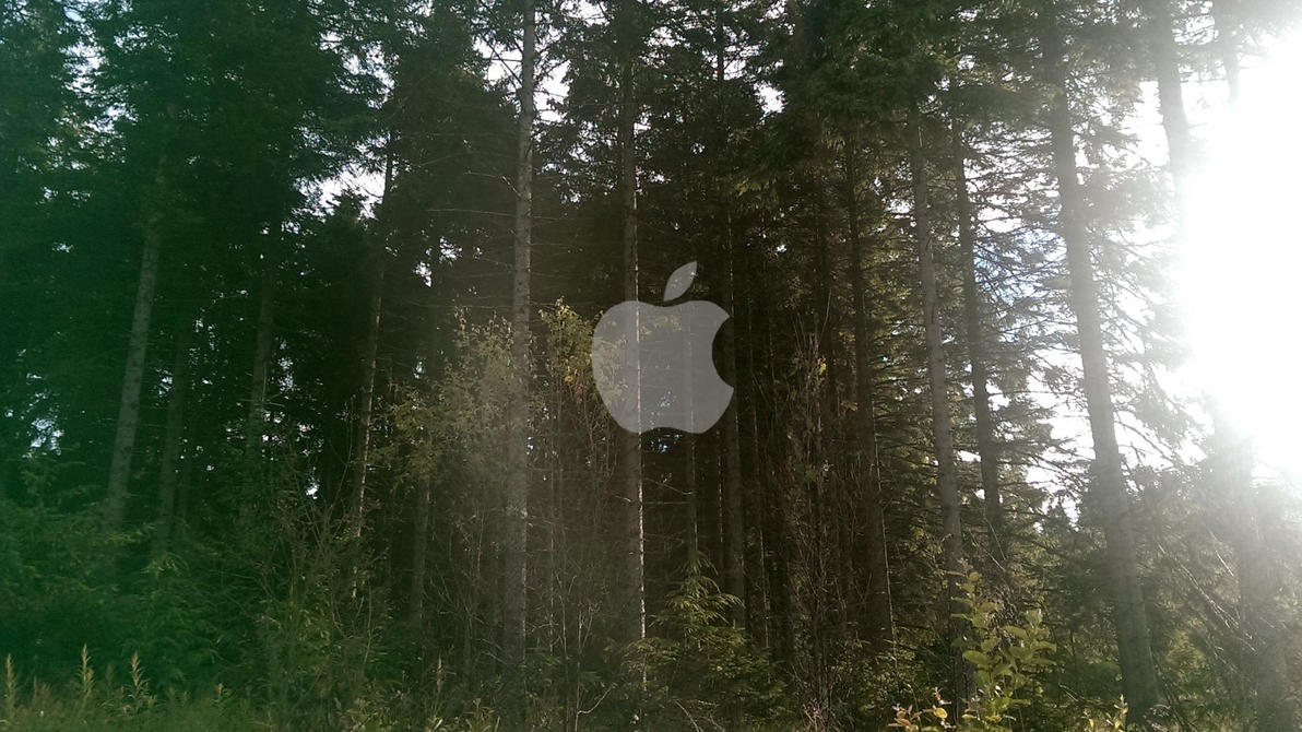 Must see Wallpaper Macbook Forest - apple_wallpaper_forest_by_applewallpapers-d7r7qhb  Pic_955222.jpg