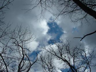 Alabama Sky by renkurasaki