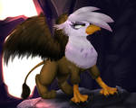 Gilda The Griffon 2016