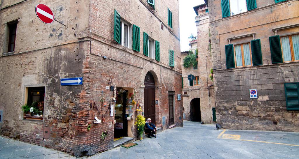 Siena Resident by chimneysweeper