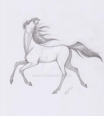 Another horse sketch by LuisaVFM