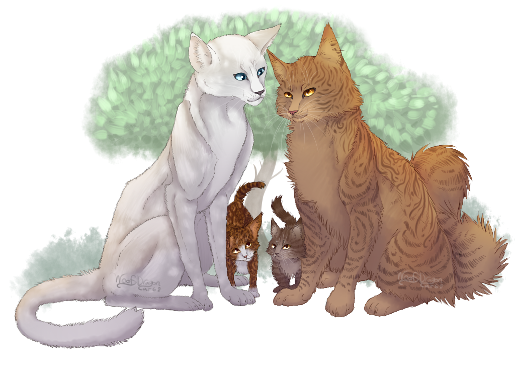 Warrior Cats Birdflight