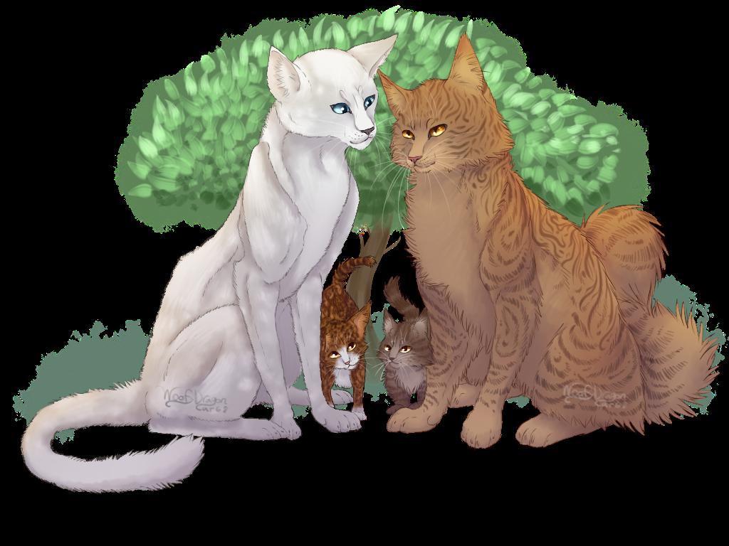 Warrior Cats Speedpaint Finchwing