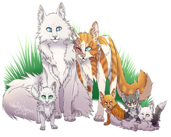Cloudtail X Brightheart by WoofyDragon