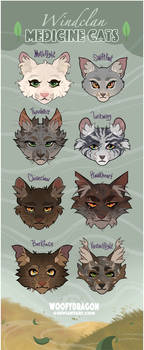Windclan Medicine Cats