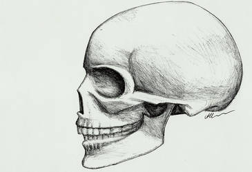 Skull by HippieInHell