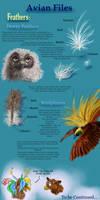 Avian files: Feathers II