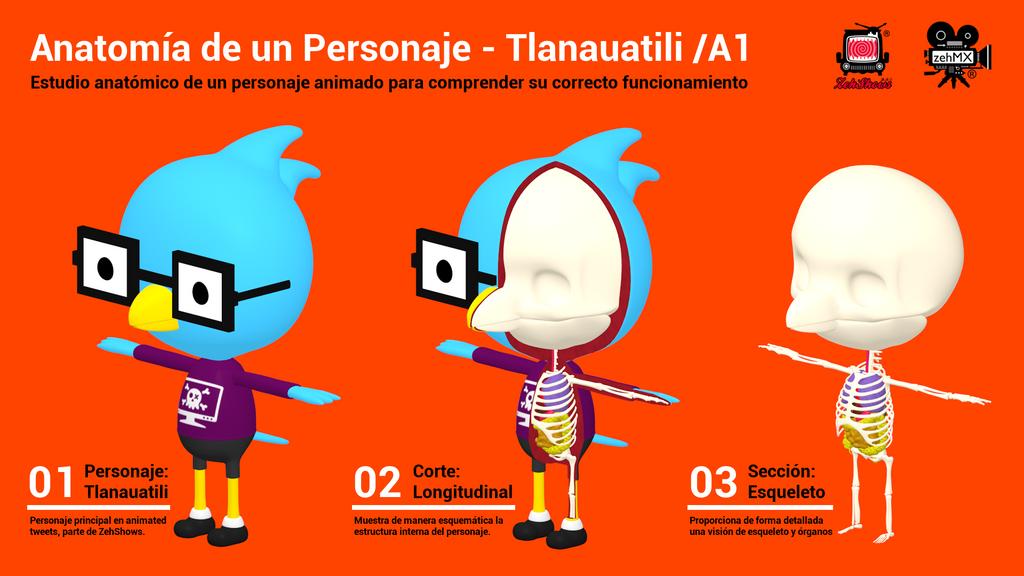 Anatomia de un Personaje by zeh-MX on DeviantArt