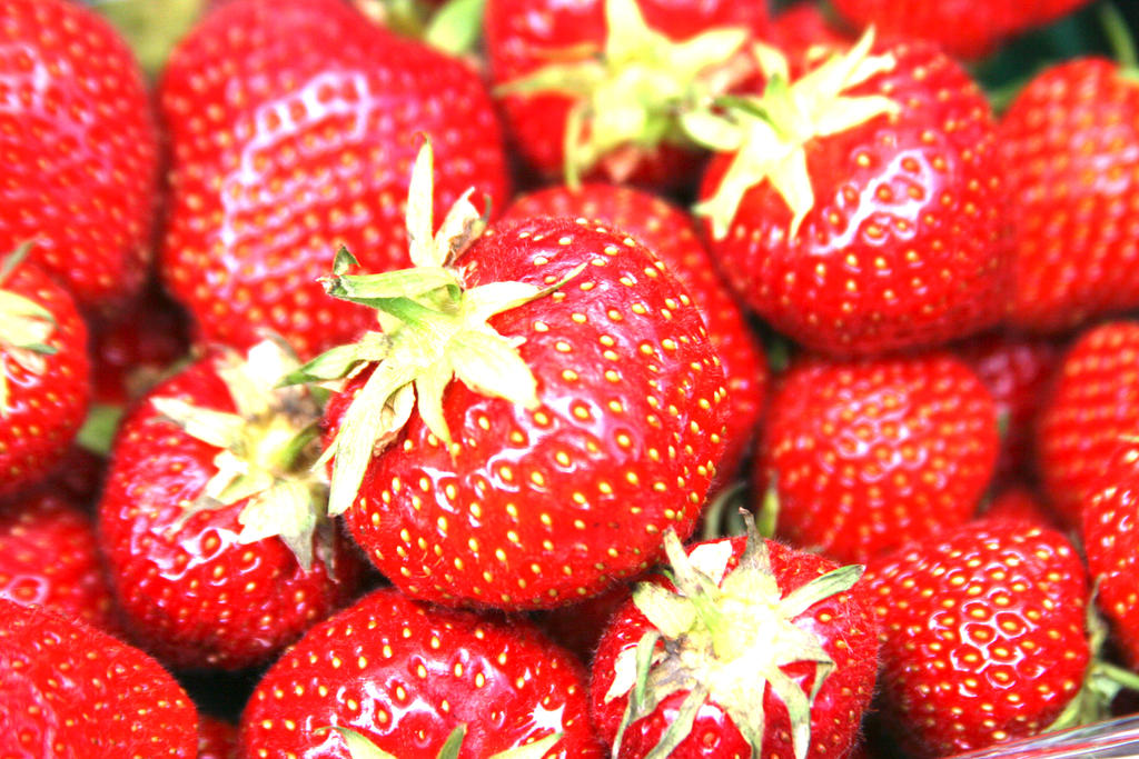 Fruity Fruit Strawberrys by Murachacha