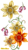 Flowers for decoration
