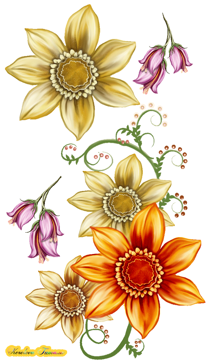 Flowers for decoration by Korolevatumana on DeviantArt