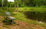 old bench on the shore of the pond
