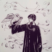 Winter at Hogwarts by mliddam