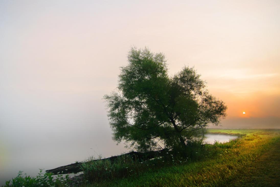 Late Summer by BillyRWebb