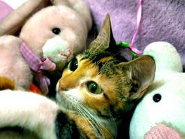 Stuffed Animals by ariellemika12