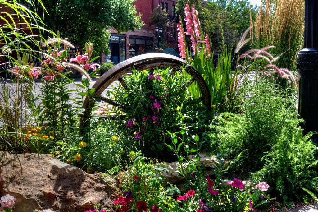 Wheel In The Garden by GradyArt