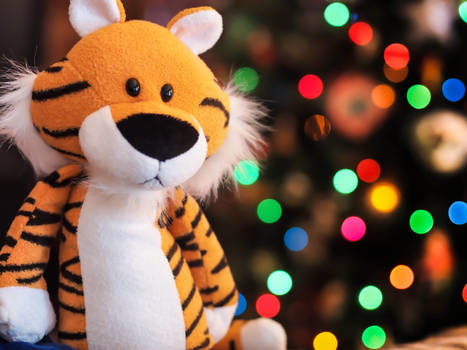 Merry Christmas from Hobbes!