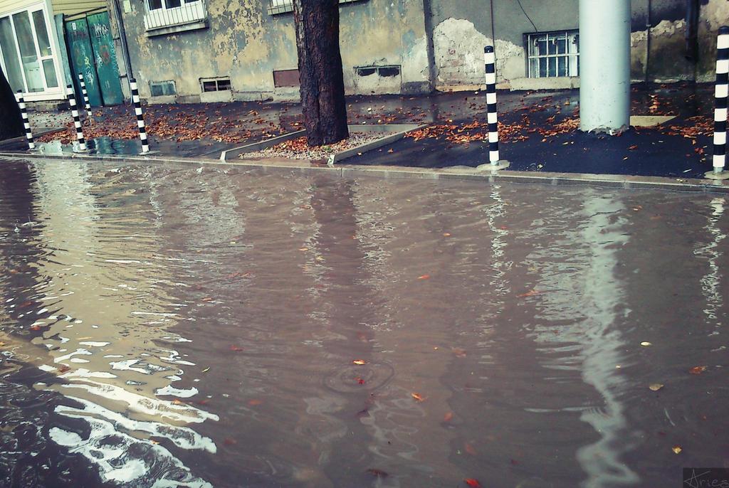 Rain 5 by AriesWildChild