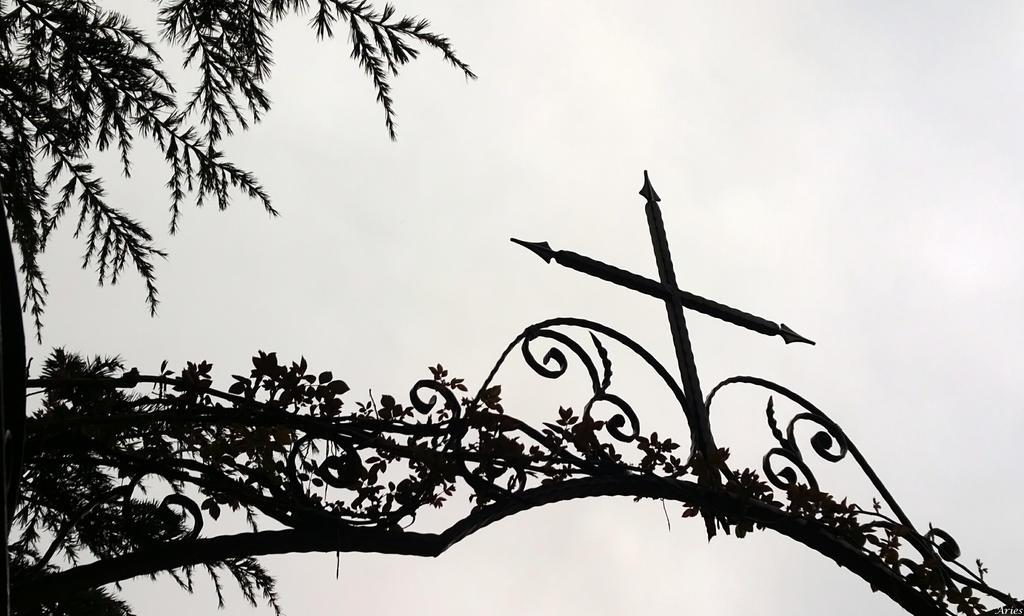 Cross by AriesWildChild