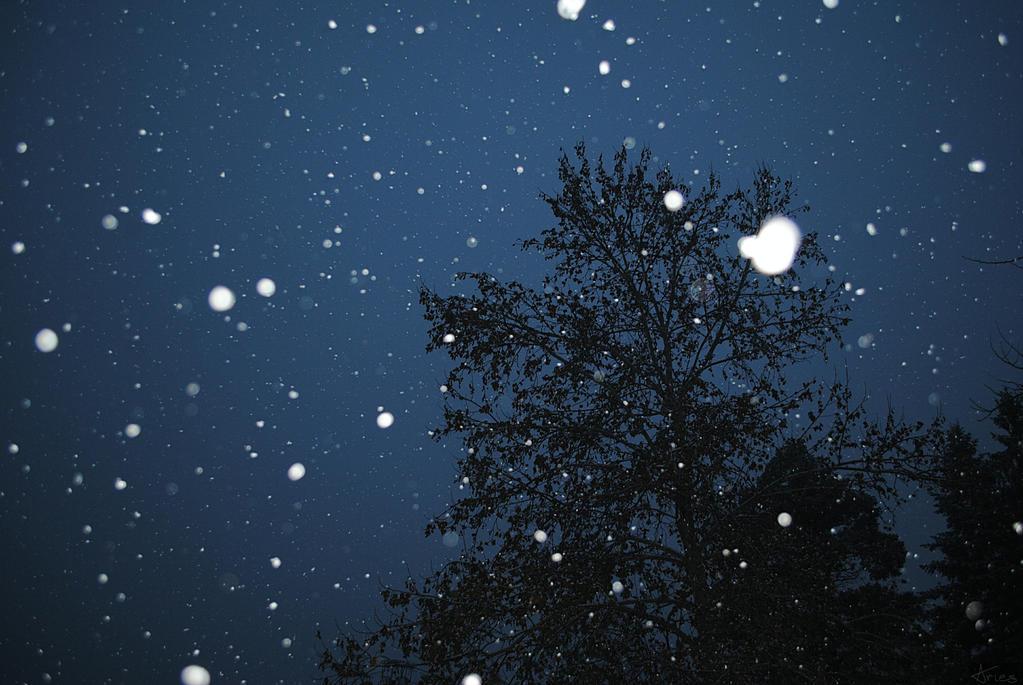 Snowy night by AriesWildChild