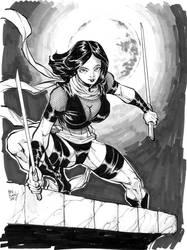 Ninja Girl by Dogsupreme