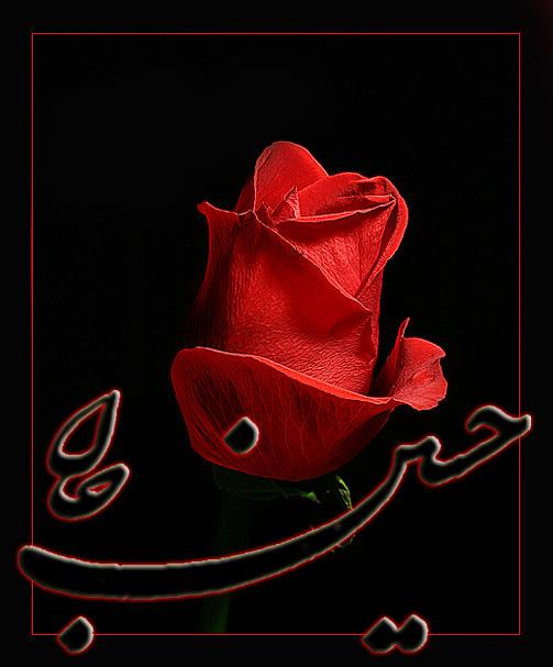 imam_hussein__by_mssamadpoor.jpg