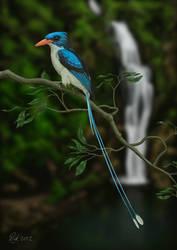 Paradise Kingfisher (Digital Painting)