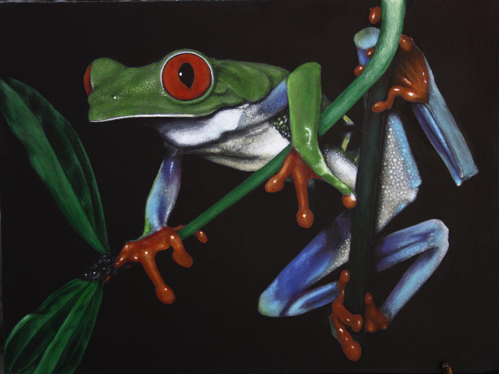Red eyed tree frog. Acrylic on canvas by Rick-Lilley