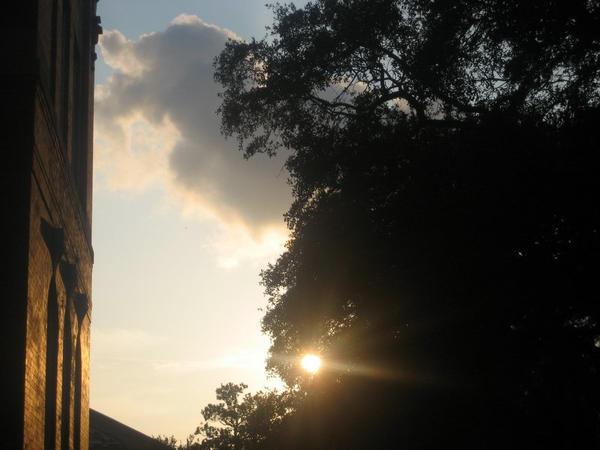 Sunbeam 2 by MoonlightXxXShadow