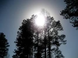 Sun by MoonlightXxXShadow