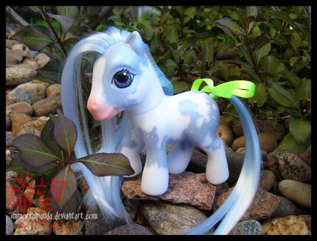MLP Custom-Fantasy Paint Pony