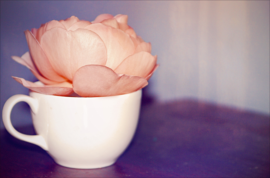 najromanticnija soljica za kafu...caj Remember__remember_by_everlily-d2yw8b4