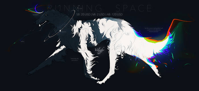 RUNNING SPACE ADOPT AUCTION closed