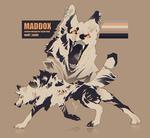 Maddox by Volinfer
