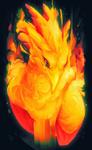 Phoenix by Volinfer