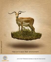 Timberland Idea 1