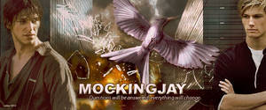 Hunger Games Mockingjay title