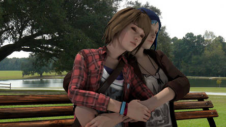 Pricefield on bench
